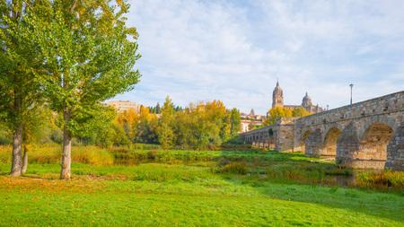 salamanca: Roman bridge in the city of Salamanca