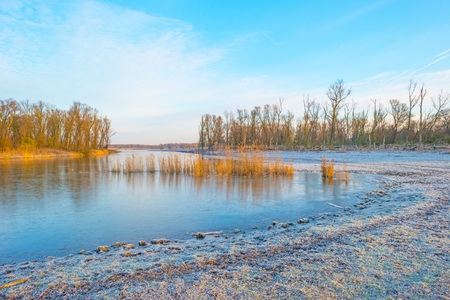 Shore of a frozen lake at sunrise in winter