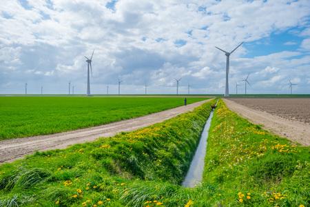 Wind turbines in a field in spring Stock Photo