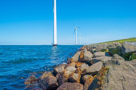 Wind farm along a coastline in sunlight in spring