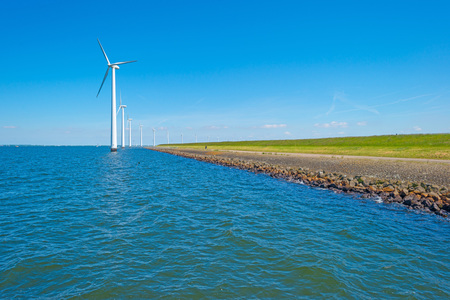 Wind farm along a coastline in sunlight in spring