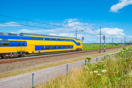 feral: Railroad through a natural park in summer Editorial