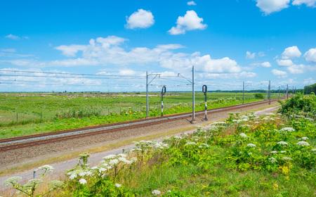 Railroad through a natural park in summer Stock Photo
