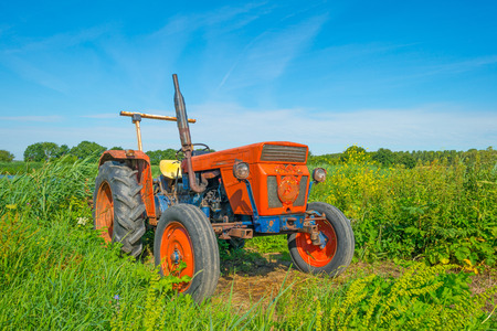 Derelict old tractor in a field in summer