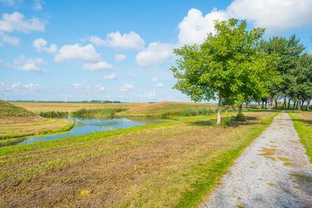 Oever van een kanaal door het landschap in de zomer Stockfoto