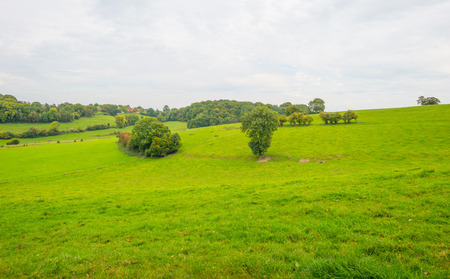Panorama of a green meadow on a hill in sunlight to fall Stock Photo