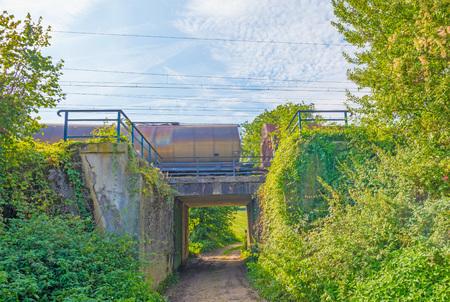 Railway through nature in sunlight in autumn Stock Photo