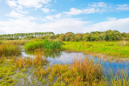 Lake shoreline with rain below a blue cloudy sky in autumn