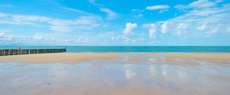 夏の太陽の下で海沿いの砂浜