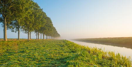Enter along a foggy canal at sunrise to fall Stockfoto