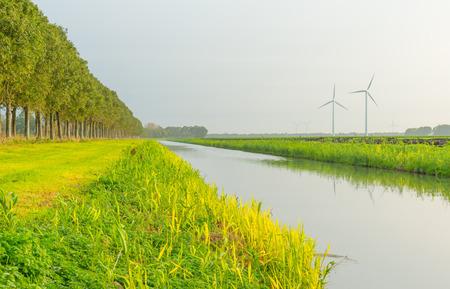 Kanaal langs een veld in zonlicht om te vallen Stockfoto