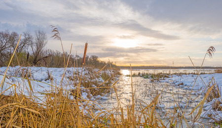 Shore of a frozen lake in a snowy field in sunlight in winter Stock Photo
