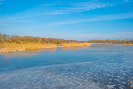The edge of a frozen lake in sunlight in winter Imagens