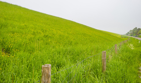 Green grassy dike protecting land against the North Sea Stockfoto - 101675534