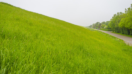 Green grassy dike protecting land against the North Sea Stockfoto