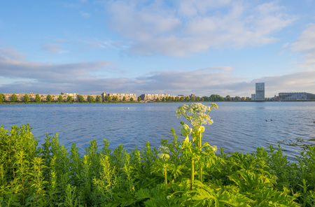 Skyline of a city along the shore of a lake at sunrise in spring Stockfoto