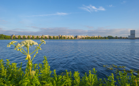 Skyline of a city along the shore of a lake at sunrise in spring Stockfoto - 103549825
