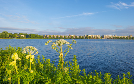 Skyline of a city along the shore of a lake at sunrise in spring Stockfoto - 103549826