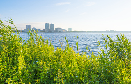 Skyline of a city along the shore of a lake at sunrise in spring Stockfoto - 103549857