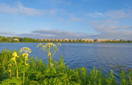 Skyline of a city along the shore of a lake at sunrise in spring Stockfoto - 103550863