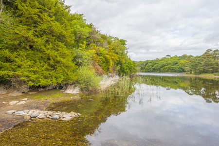 Panorama of a lake and a lake in a national park in summer Imagens