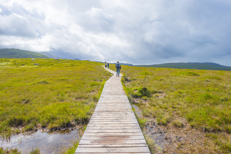 Panorama of mountains, marshy land and heathland or Connemara National Park in summer