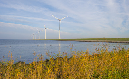 Wind turbines on a green dike along a lake in sunlight at fall