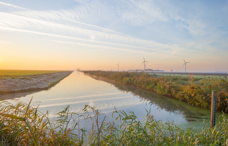 Shore of a canal in the countryside at sunrise at fall Stockfoto