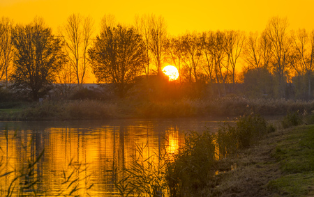 Sunset over the shore of a river along trees at fall