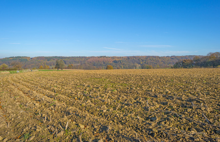 Rural hilly landscape in fall colors in sunlight in autumn Stockfoto
