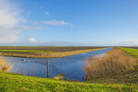 Shore of a canal meandering in a rural landscape in sunlight in winter