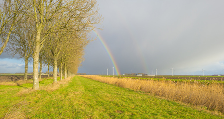 Rainbow over canal and fields in sunlight in winter