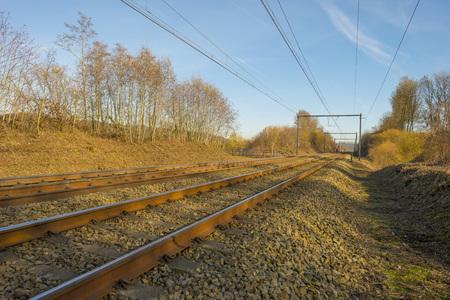 Railroad along trees under blue sky in sunlight in winter