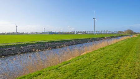 Canal in a green meadow below a blue sky in sunlight in winter Stockfoto