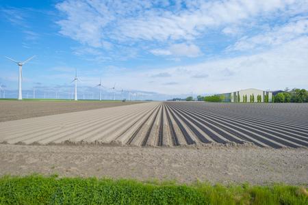 Furrows in a plowed field below a blue sky in sunlight in spring