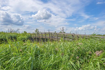 Wooden bridge over a canal in the countryside below a blue cloudy sky in sunlight in summer