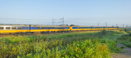 Train riding along a field in wetland below a blue sky at sunrise in summer