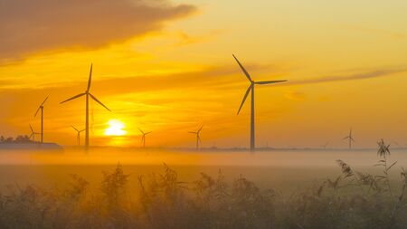 Sun shines on wind turbines in a foggy field at sunrise in summer