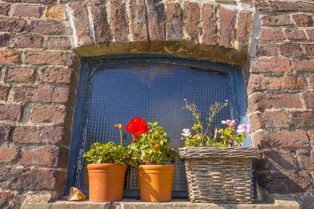 Flowerpot on a windowsill outside a building in sunlight at fall