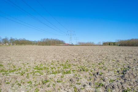 Transmission tower over an agricultural field below a blue sky in spring