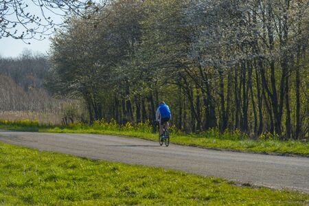 Cyclist on a road along trees below a blue sky in sunlight in spring Archivio Fotografico
