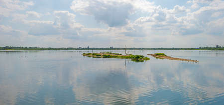 Edge of a sunlit lake with small islands with birds breeding reflecting a blue cloudy sky in summer