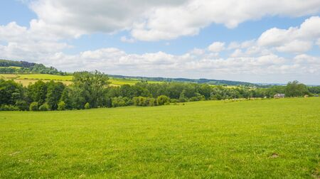 Grassy fields and trees with lush green foliage in green rolling hills below a blue sky in sunlight in summer Фото со стока - 150480807