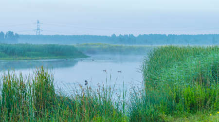 The edge of a foggy lake at sunrise in an early summer morning below a misty sky, Almere, Flevoland, The Netherlands, July 19, 2020