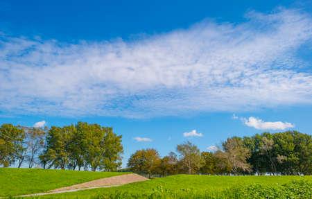 Dike in a green grassy field in sunlight under a blue sky in autumn, Almere, Flevoland, The Netherlands Stockfoto