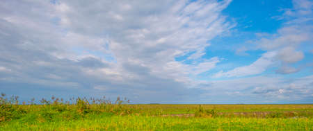The edge of a lake in a green grassy field in sunlight under a blue cloudy sky in autumn, Almere, Flevoland, The Netherlands, September 27, 2020 Standard-Bild