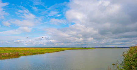 The edge of a lake in a green grassy field in sunlight under a blue cloudy sky in autumn, Almere, Flevoland, The Netherlands, September 27, 2020 Stok Fotoğraf