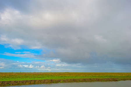 The edge of a lake in a green windy wetland in bright sunlight under a blue white csky in autumn, Almere, Flevoland, The Netherlands, October 11, 2020 Standard-Bild