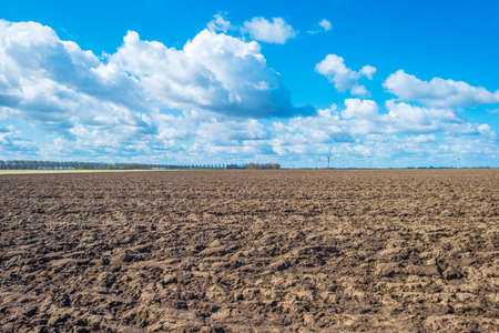 Furrows in an agricultural field in a rural area below a blue bright cloudy sky in spring, Almere, Flevoland, The Netherlands, April 13, 2021