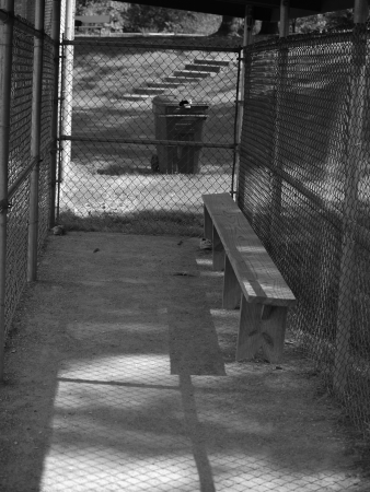 dugout: Baseball Dugout Stock Photo